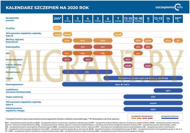 Календарь прививок в Польше