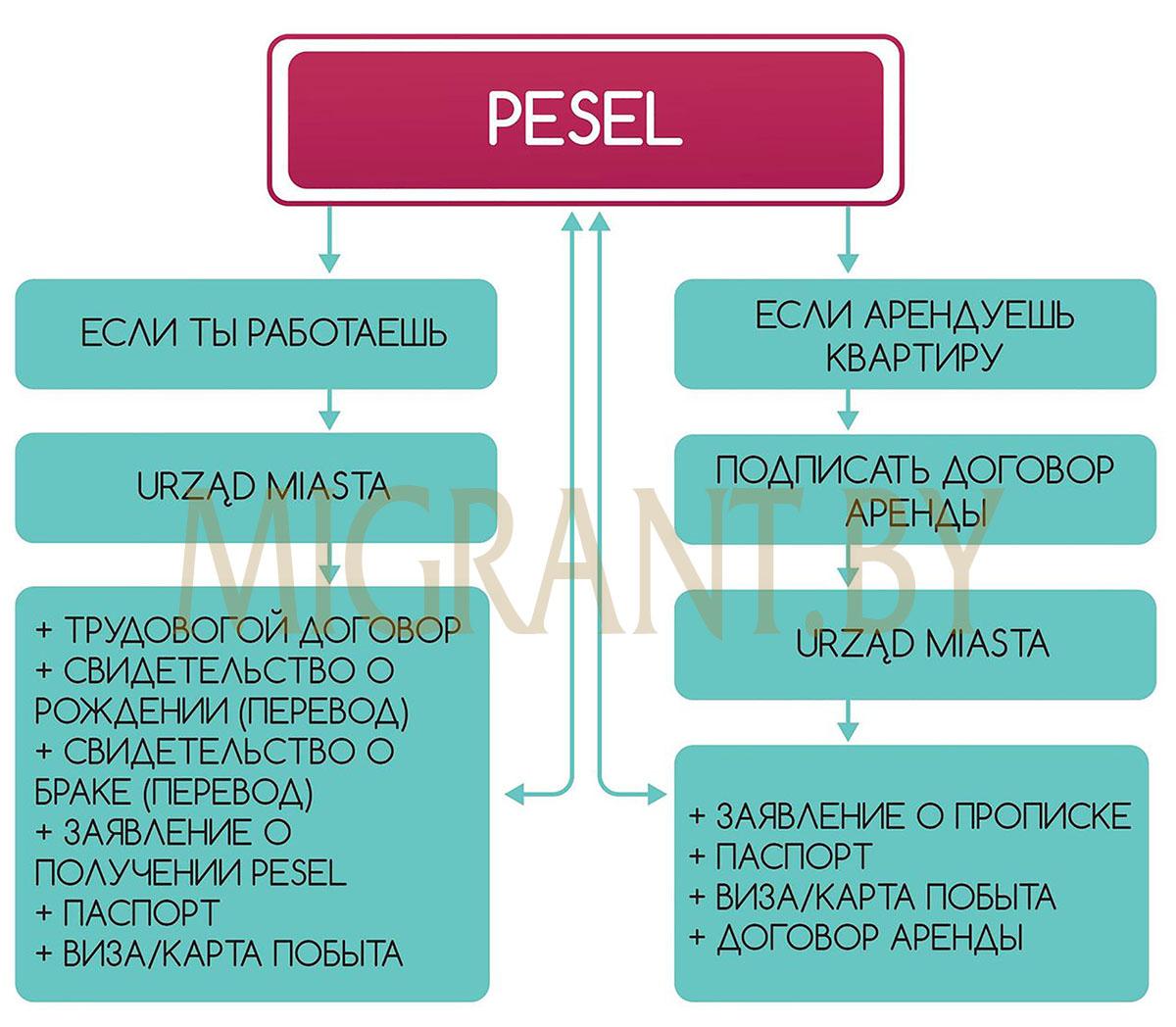 Как получить Pesel и NIP?